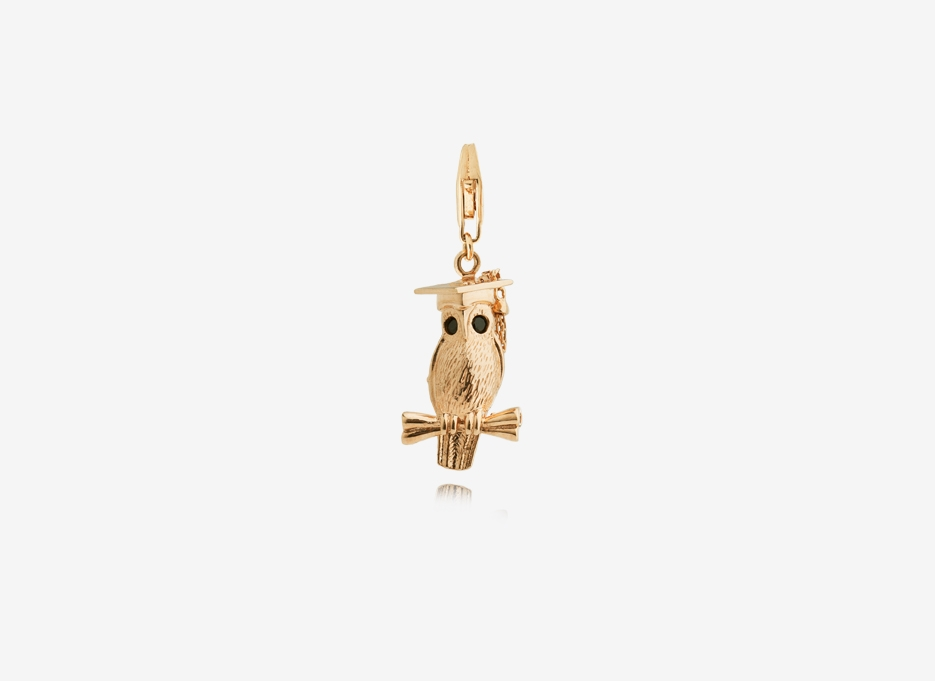 Wise Owl Charm, 18ct Yellow Gold Plated Sterling Silver