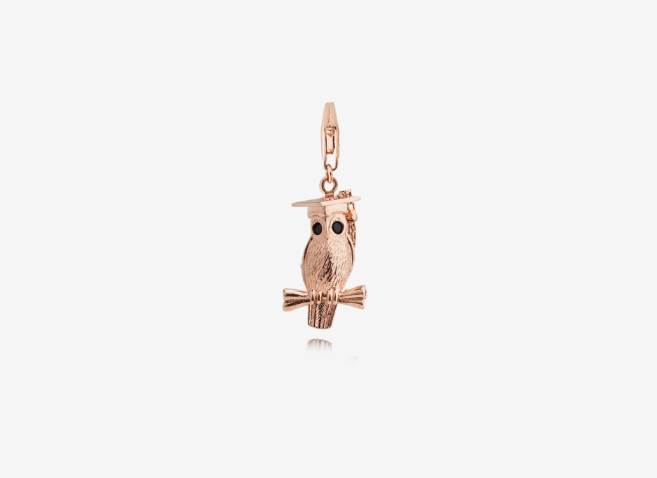 Wise Owl Charm, 18ct Rose Gold Plated Sterling Silver