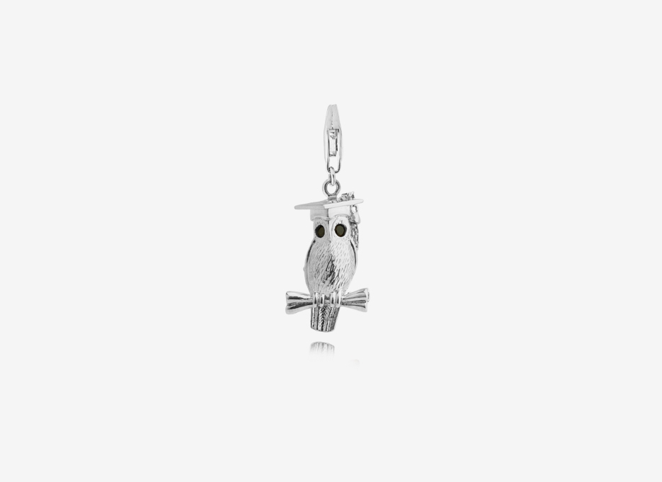 Wise Owl Charm, Sterling Silver